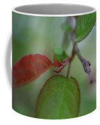 Soft Branch Coffee Mug