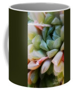 Soft Natural Succulents Coffee Mug