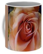 Soft Peach Rose Coffee Mug