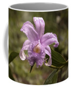 Soft Pink One-day Orchid With Droplets Of Dew Coffee Mug