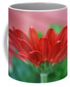 Soft Red Coffee Mug