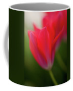 Soft Tulips Coffee Mug