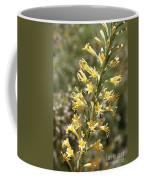 Soft Yellow Desert Flowers Coffee Mug