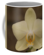 Soft Yellow Orchid Two Coffee Mug