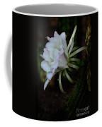 Softly Spoken  Coffee Mug