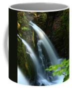 Sol Duc Falls 1 Coffee Mug