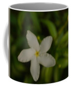 Solitary Flower Coffee Mug
