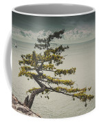 Solitary Tree Coffee Mug