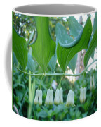 Solomans Seal In Spring Coffee Mug
