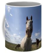 Some Horses Roam In Burwell, Ne Coffee Mug
