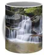 Somersby Falls 1 Coffee Mug