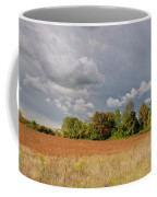 Somerset Sky 3069 Coffee Mug