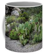 Sonoran Cactus Coffee Mug