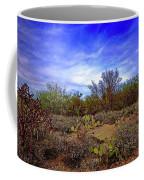 Sonoran Desert H1819 Coffee Mug