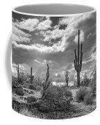 Sonoran Desert In Black And White  Coffee Mug