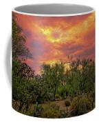 Sonoran Desert Sunset Op46 Coffee Mug