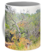 Sor 015 Coffee Mug