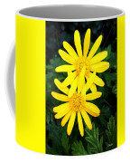 Soul Mates Coffee Mug