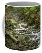 Sounds Of A Mountain Stream Coffee Mug
