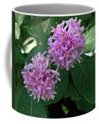 South African Flower 2 Coffee Mug