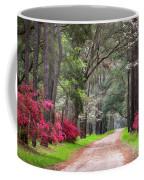 South Carolina Lowcountry Spring Flowers Dirt Road Edisto Island Sc Coffee Mug