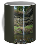 South Falls 2 Coffee Mug