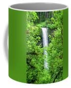 South Falls Coffee Mug