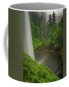 South Falls Vista Coffee Mug