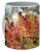 South Lake Beauties Coffee Mug