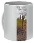 South Mountain6 Coffee Mug