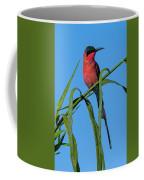 Southern Carmine Bee-eater  Coffee Mug