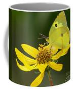 Southern Dogface Butterfly Coffee Mug