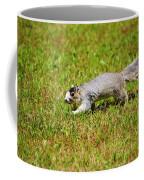 Southern Fox Squirrel Coffee Mug