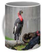 Southern Ground Hornbills Coffee Mug