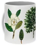 Southern Magnolia Or Bull Bay  Coffee Mug