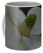 Southern Manor Coffee Mug