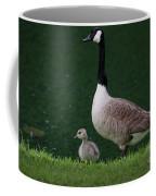 Southern Pond View Coffee Mug