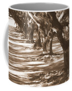 Southern Sunlight On Live Oaks Coffee Mug