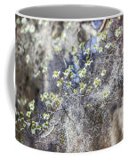 Southern Visions Coffee Mug