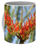 Southwest Ocotillo Bloom Coffee Mug