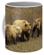 Sow Grizzly With Cubs Coffee Mug