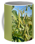 Soybeans In Autumn Coffee Mug