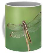 Spangled Skimmer Dragonfly Female Coffee Mug