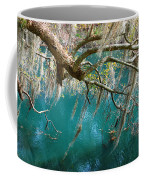 Spanish Moss And Emerald Green Water Coffee Mug