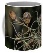 Spanish Moss On Azalea  Coffee Mug