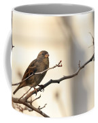 Sparrow On A Limb Coffee Mug