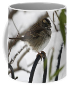 Sparrow On Fence Coffee Mug