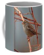 Sparrow On Grape Vine Coffee Mug