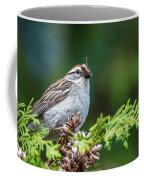 Sparrow With Lunch Coffee Mug