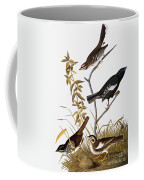 Sparrows Coffee Mug by John James Audubon